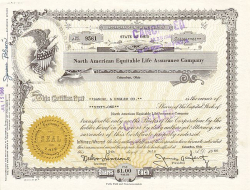 North American Equitable Life Assurance Company  historic stocks - old certificates